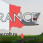 Авиакомпании S7 Airlines и JAL заключили код-шеринговое соглашение
